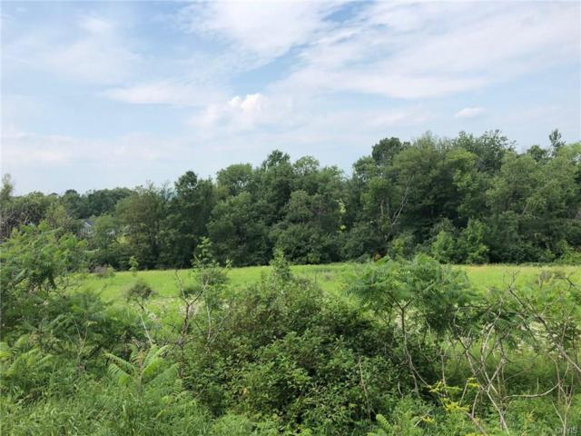 931 Sherman Road, Virgil, NY 13045 (MLS #S1133832) :: The Chip Hodgkins Team