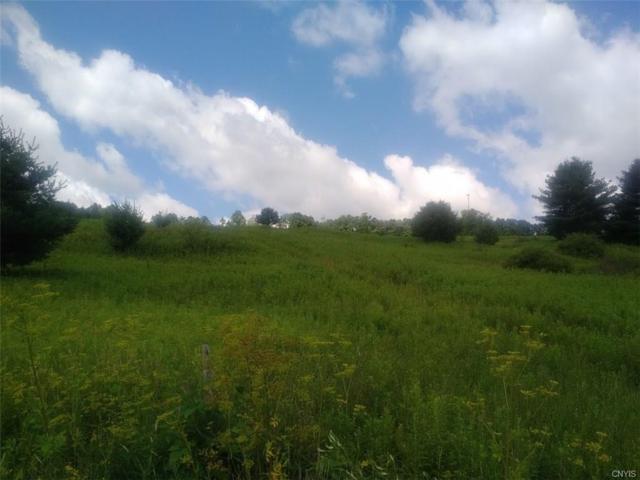 0 Route 26 Road, Cincinnatus, NY 13040 (MLS #S1134803) :: Robert PiazzaPalotto Sold Team