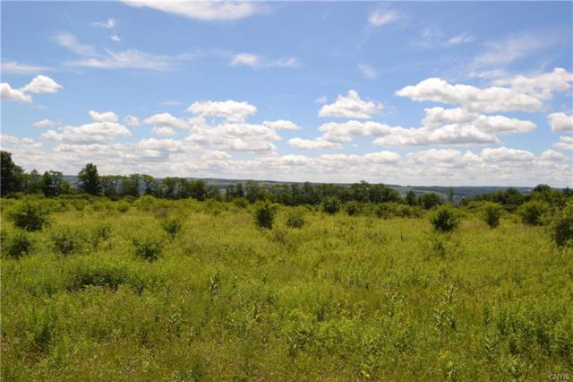 000 Route 41, Spafford, NY 13152 (MLS #S1134856) :: The Chip Hodgkins Team