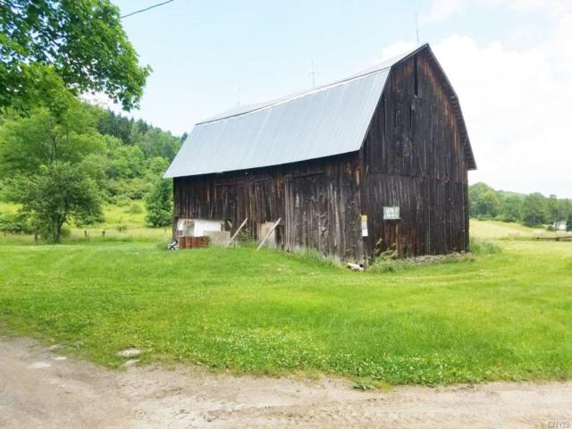 7171 County Route 333, Thurston, NY 14821 (MLS #S1136619) :: Thousand Islands Realty