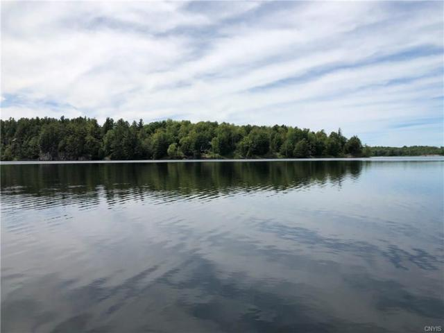 0 Lead Mine Road, Rossie, NY 13646 (MLS #S1138133) :: Thousand Islands Realty