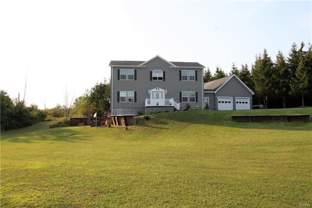 30189 Us Route 11, Le Ray, NY 13637 (MLS #S1139977) :: The Chip Hodgkins Team