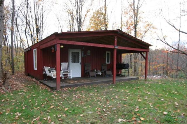 00 State Route 13, Williamstown, NY 13493 (MLS #S1140485) :: The Rich McCarron Team