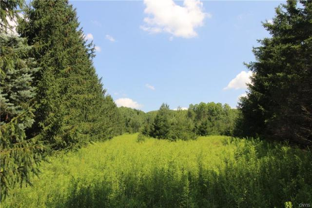 5985 Big Hill Rd Lot 1, Sempronius, NY 13118 (MLS #S1140556) :: Updegraff Group
