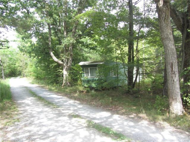 0 Fitton Rd/Ptv, Hammond, NY 13646 (MLS #S1140600) :: The Chip Hodgkins Team