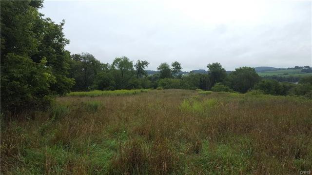 0 River Road, Smyrna, NY 13464 (MLS #S1141224) :: Updegraff Group