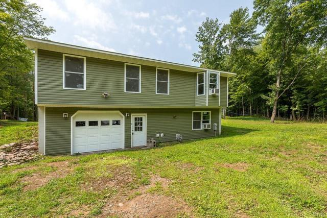 157 Perfield Road, Hastings, NY 13076 (MLS #S1141431) :: BridgeView Real Estate Services
