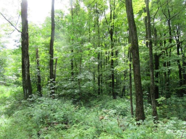 00 W Redfield Road, Lorraine, NY 13659 (MLS #S1141511) :: Thousand Islands Realty