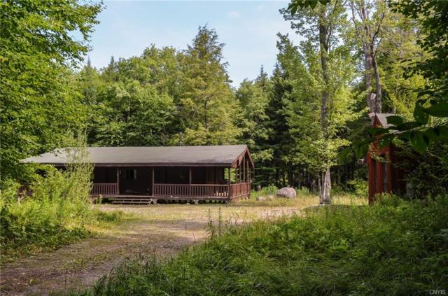 10990 New Road Wild River Forest Road #10, Remsen, NY 13438 (MLS #S1142095) :: Thousand Islands Realty
