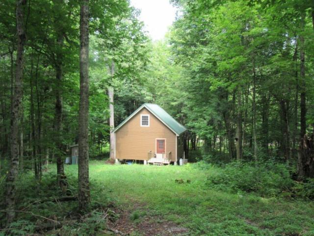 0 Owl Pond Rd/Pvt, Hermon, NY 13652 (MLS #S1142582) :: BridgeView Real Estate Services