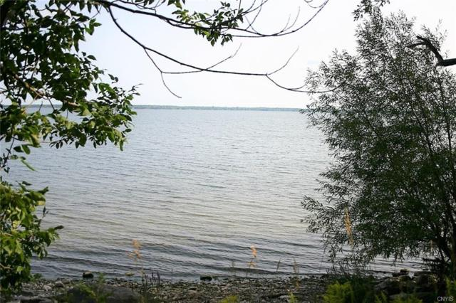 6738 Montana Shores Road, Lyme, NY 13693 (MLS #S1142718) :: BridgeView Real Estate Services