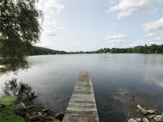 6697 Peace Full Drive, Summerhill, NY 13077 (MLS #S1142720) :: Thousand Islands Realty