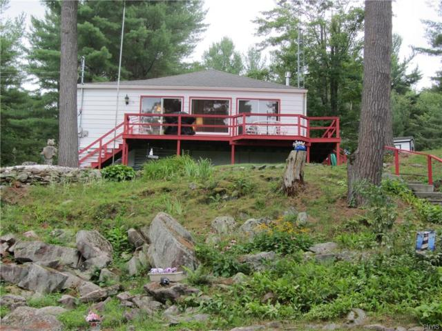 73 Dillon Point Rd/Prvt, Hammond, NY 13646 (MLS #S1142806) :: Thousand Islands Realty