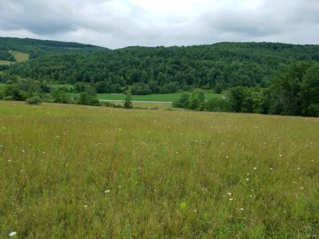 00 County Route 126, Troupsburg, NY 14885 (MLS #S1142966) :: Thousand Islands Realty