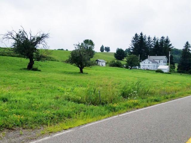 6370 County Route 69, Howard, NY 14823 (MLS #S1143629) :: Thousand Islands Realty
