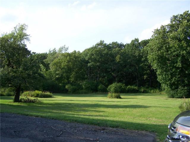 5865 Seneca Turnpike E, Onondaga, NY 13078 (MLS #S1144808) :: MyTown Realty
