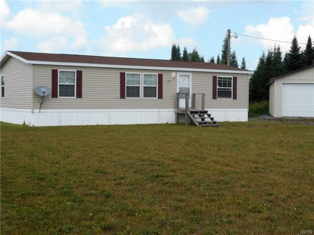 4217 Mud Lake Road, Lewis, NY 13489 (MLS #S1145440) :: The CJ Lore Team | RE/MAX Hometown Choice