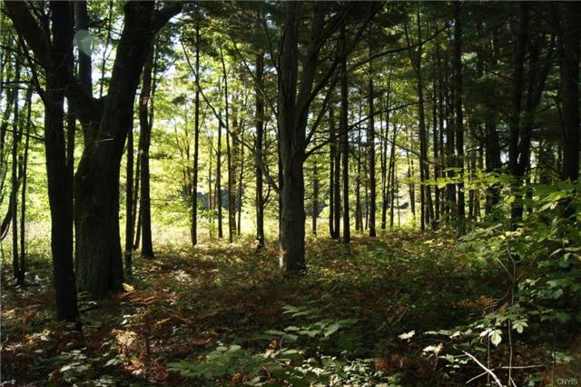 Lot 2 B Eagleview Terrace Terrace, Schroeppel, NY 13135 (MLS #S1145696) :: Thousand Islands Realty