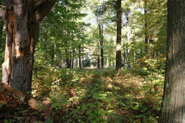 Lot 1 A Eagleview Terrace, Schroeppel, NY 13135 (MLS #S1145701) :: Thousand Islands Realty