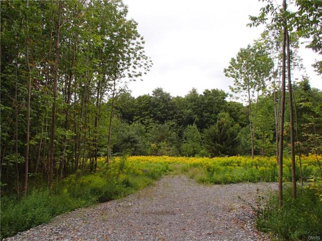 00 Henneberry Road, Pompey, NY 13138 (MLS #S1146128) :: BridgeView Real Estate Services