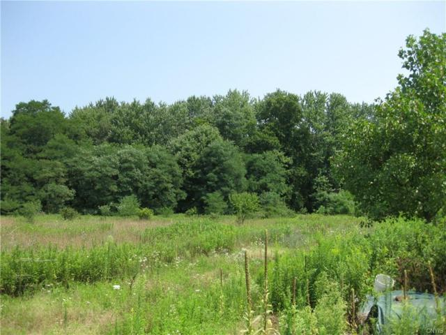 0 S Co Rt 48, Richland, NY 13144 (MLS #S1146735) :: Thousand Islands Realty