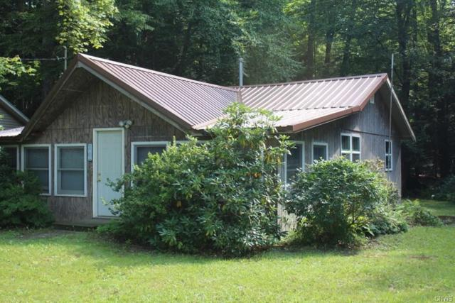 217 Hager Drive, Richland, NY 13142 (MLS #S1146808) :: The CJ Lore Team | RE/MAX Hometown Choice