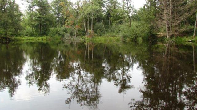 624 New Scriba Drive, Boylston, NY 13144 (MLS #S1147714) :: Thousand Islands Realty