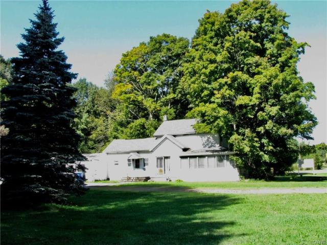 1547 State Route 49, Constantia, NY 13044 (MLS #S1147725) :: Thousand Islands Realty
