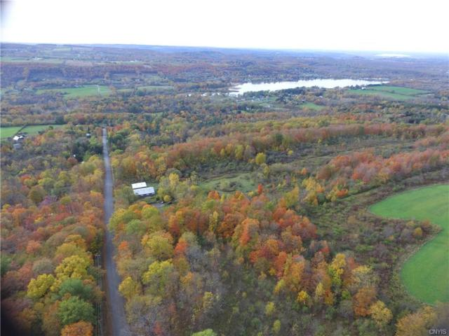 0 Frank Long Road, Pompey, NY 13138 (MLS #S1147900) :: BridgeView Real Estate Services
