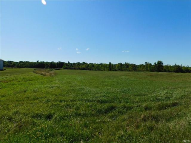0 Nys Route 12, Clayton, NY 13624 (MLS #S1148120) :: Thousand Islands Realty