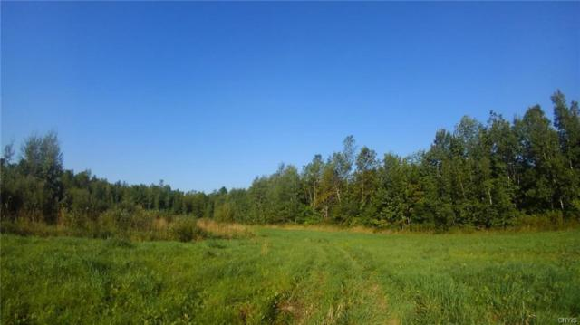 0 County Rd 49, Stockholm, NY 13697 (MLS #S1148930) :: Thousand Islands Realty