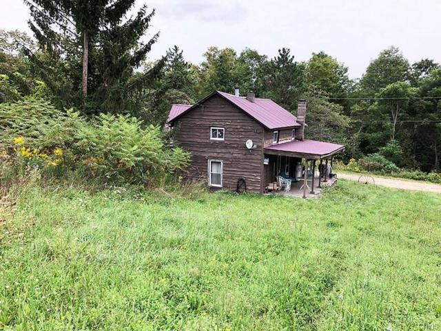 6603 Miller Road, Belfast, NY 14813 (MLS #S1149074) :: Thousand Islands Realty