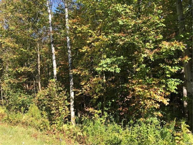 00 Frank Lacy Road, Richland, NY 13142 (MLS #S1149572) :: The CJ Lore Team | RE/MAX Hometown Choice