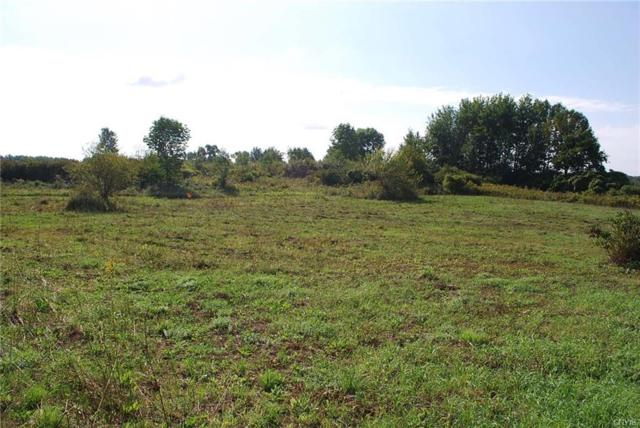 6416 State Route 3, Mexico, NY 13114 (MLS #S1150167) :: The CJ Lore Team | RE/MAX Hometown Choice