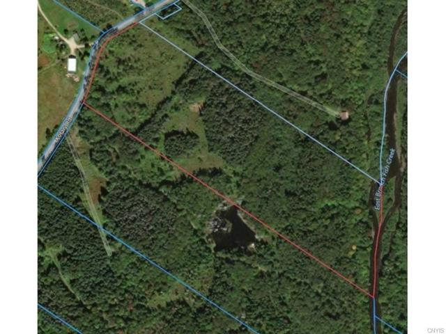 0 Kotary Road, Lewis, NY 13325 (MLS #S1150369) :: Thousand Islands Realty