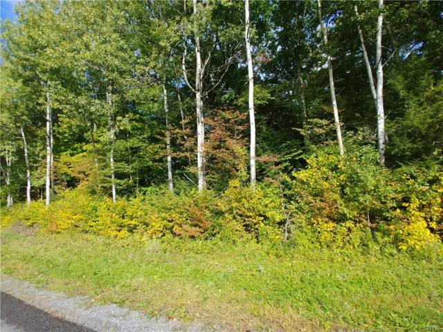 246 Paradise Road, Palermo, NY 13036 (MLS #S1152439) :: BridgeView Real Estate Services