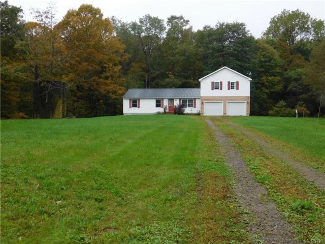 9199 Howd Road, Camden, NY 13316 (MLS #S1153103) :: The Rich McCarron Team
