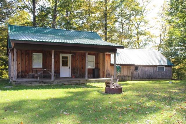 21 Kaple Drive, Orwell, NY 13144 (MLS #S1153191) :: BridgeView Real Estate Services