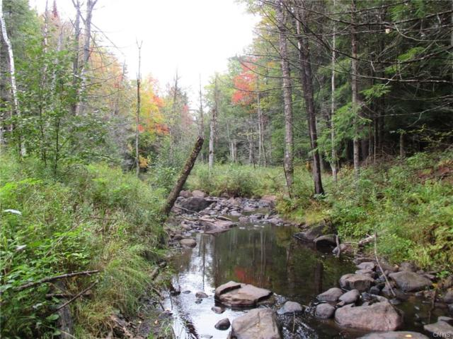 0 Clintonville Road, Ausable, NY 12924 (MLS #S1153439) :: BridgeView Real Estate Services