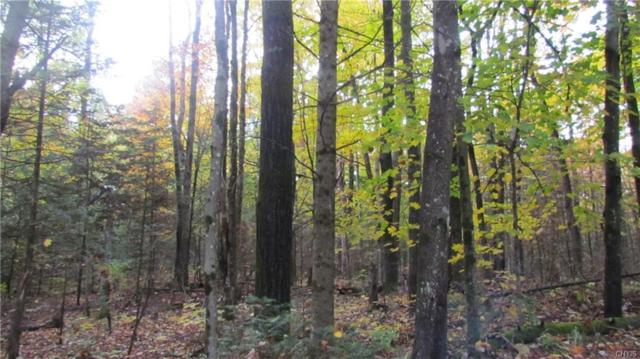 000 Beartown Road, Croghan, NY 13327 (MLS #S1153491) :: BridgeView Real Estate Services