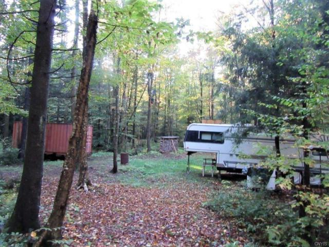 0 Neff Road, West Turin, NY 13325 (MLS #S1153590) :: Thousand Islands Realty