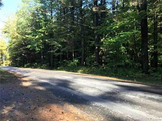 00 Partridgeville Road, Greig, NY 13345 (MLS #S1153819) :: BridgeView Real Estate Services
