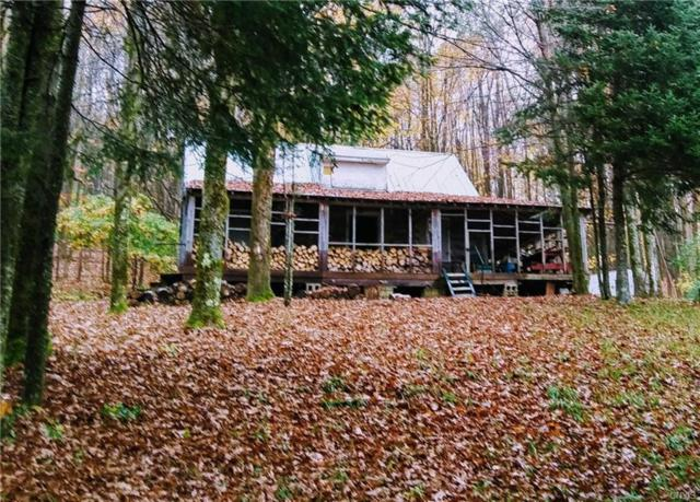 --0 Holmes Road, Boonville, NY 13309 (MLS #S1154606) :: The CJ Lore Team | RE/MAX Hometown Choice