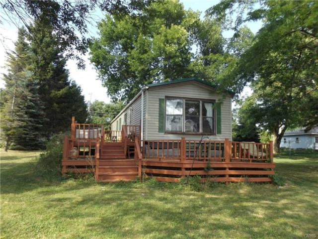 2370 Bruns Drive, Cape Vincent, NY 13618 (MLS #S1154883) :: Thousand Islands Realty