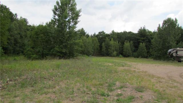Side of Mcconnell Road, Greig, NY 13343 (MLS #S1155084) :: Robert PiazzaPalotto Sold Team