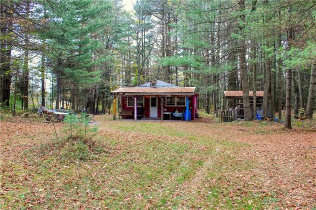 8068 Moose River Road, Lyonsdale, NY 13368 (MLS #S1155304) :: MyTown Realty