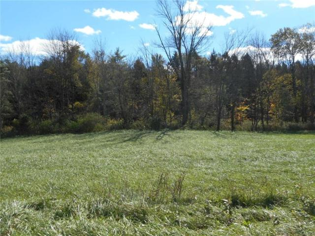00 Fish Hill Road, Willet, NY 13863 (MLS #S1155332) :: BridgeView Real Estate Services