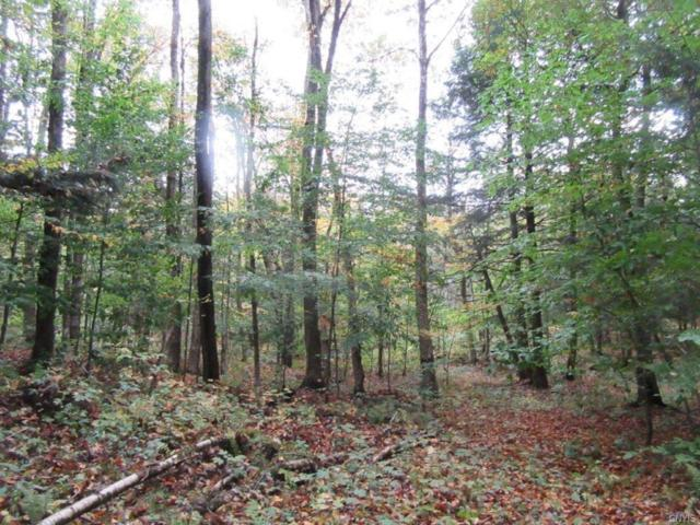 0 Flor /Hill Road, Florence, NY 13316 (MLS #S1155498) :: Thousand Islands Realty