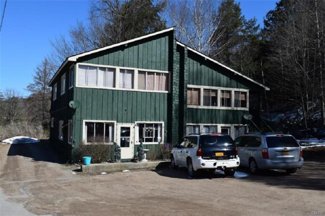 235 State Route 28, Inlet, NY 13360 (MLS #S1155602) :: The Rich McCarron Team