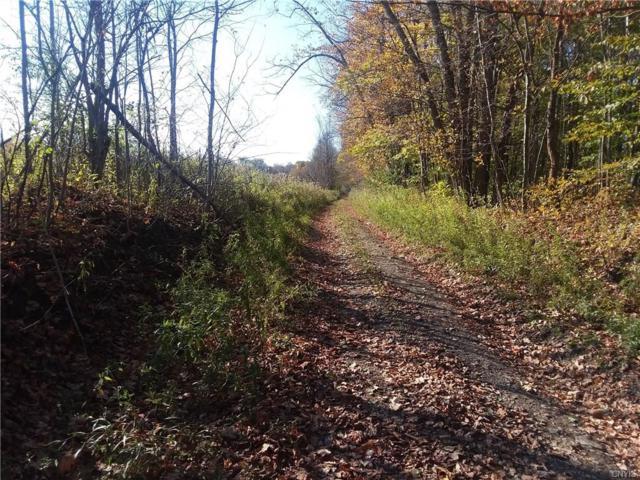 0 Cruickshank Road, Deerfield, NY 13502 (MLS #S1156320) :: Thousand Islands Realty